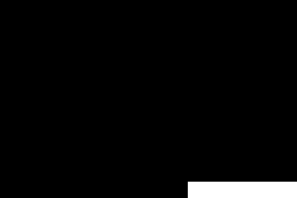 株式会社パレイド